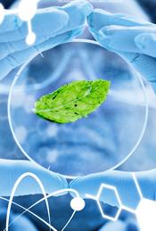 Les sciences environnementales